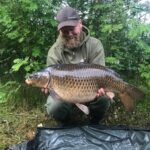 Common Carp and Mirror Carp (How Are They Different?)