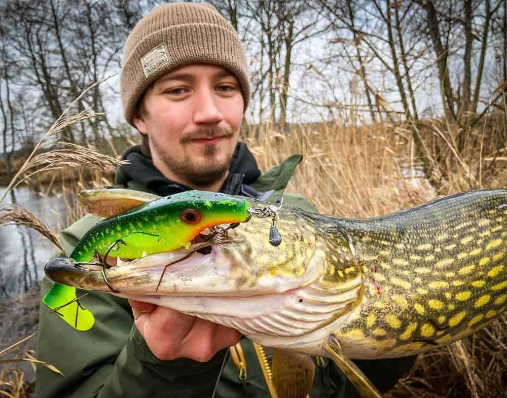 a happy angler holding a big pike that he has caught on a large softbait