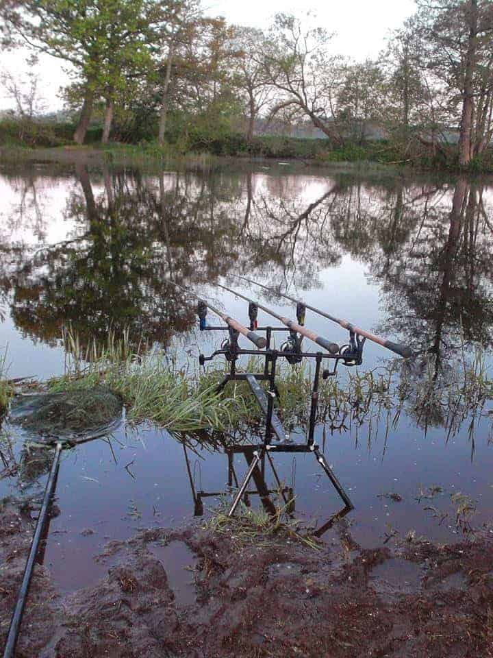 Best Times to Fish for River Bream