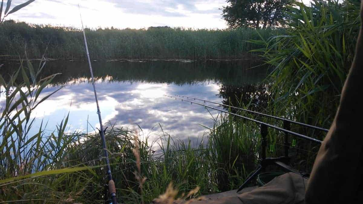 Best Methods for Catching Big River Bream