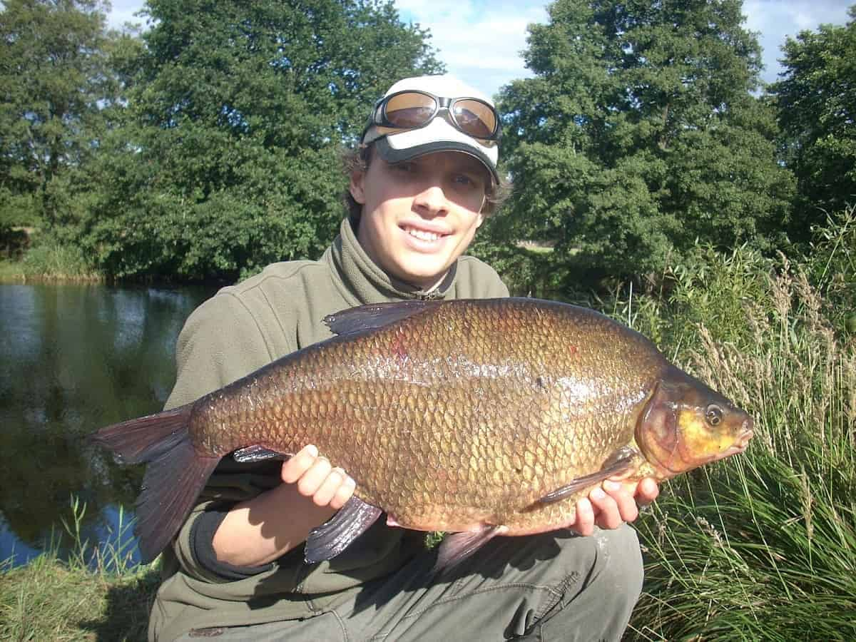 how to catch big river bream