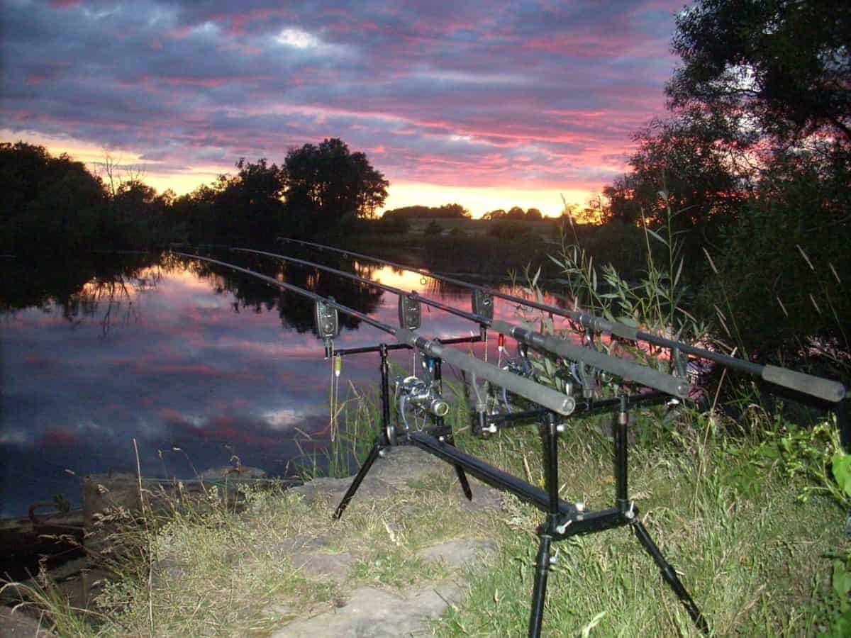Best Methods for Fishing Tench at Night