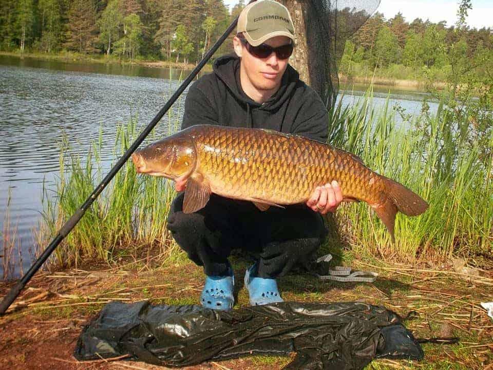 an angler on a lake holding a big and beautiful common carp