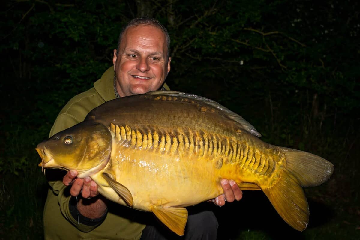 how to sex carp
