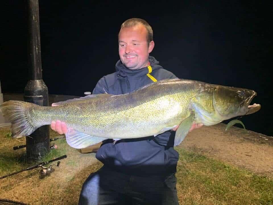 zander fishing at night