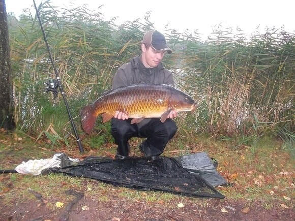 a carp angler at a lake on a cloudy morning holding a big and beautifully colored common carp that he has caught on a boilie.