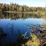 Euro-Style Carp Fishing Gear (A Complete Guide)