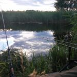 Best Tench Fishing Reels (for Ledgering and Float Fishing)