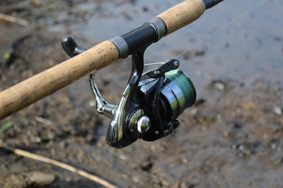 a daiwa ninja 3000A on a feeder rod for tench fishing