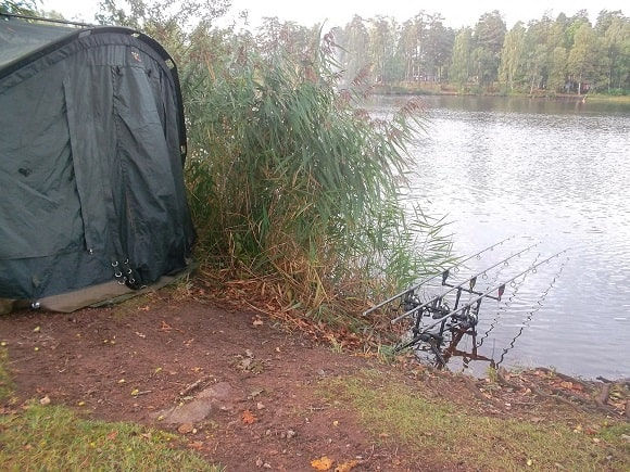a rod pod with three rigged carp rods on it waiting for a bite