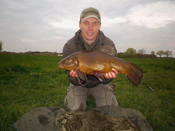a fisherman holding a really big male tench that he has caught on worms