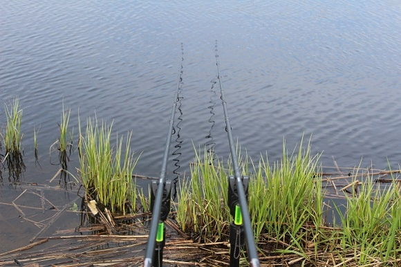 two specialist rods on banksticks and bite alarms with hangers for tench fishing