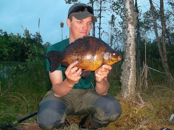 a happy specimen angler with a huge crucian that he has caught on a single sweetcorn ealry in the morning