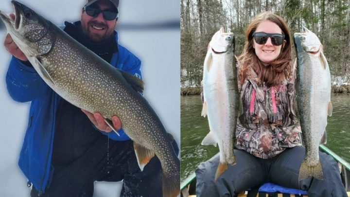 Lake Trout vs. Rainbow Trout (How Are They Different?)