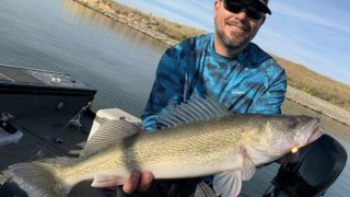 an angler on his boat holding a big and long walleye that he has caught on a fireball jig