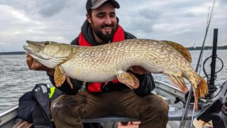 a predator angler on his boat holding a giant northern pike