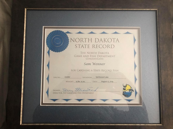 an image of the certificate for the North Dakota state record zander